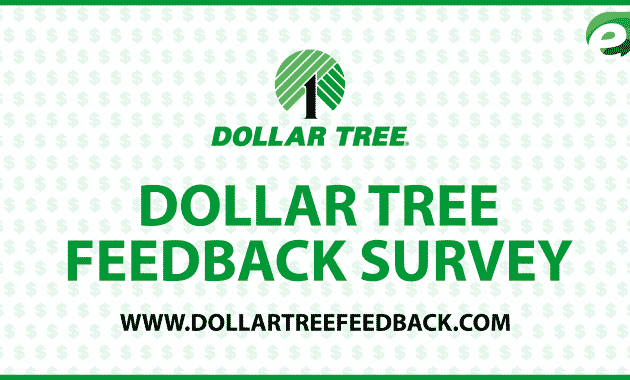 dollar tree feedback